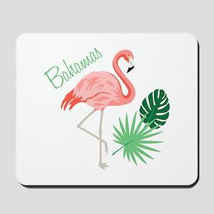 Bahamas Flamingo Mousepad