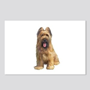 Briard A Postcards (Package of 8)