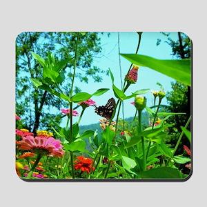 Black Swallowtail Butterfly Mousepad