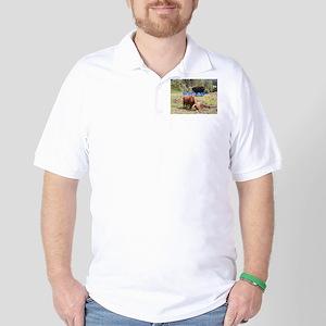 Scotland:two highland cattle Golf Shirt