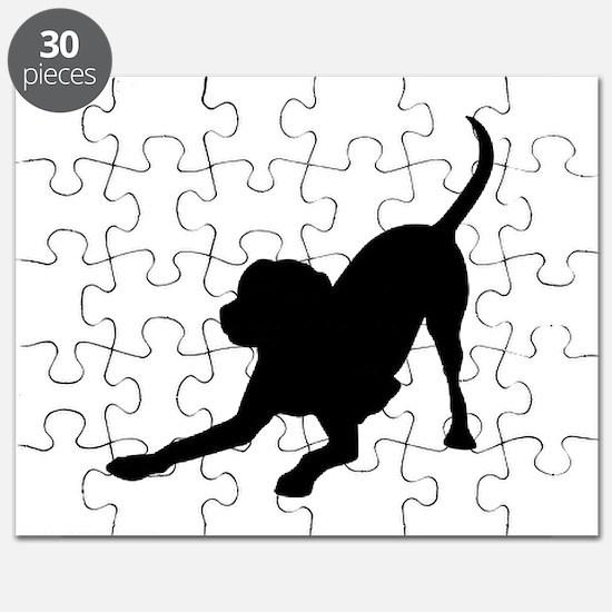 Lab 1C Puzzle