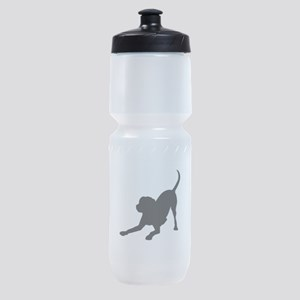 Lab 1C Sports Bottle