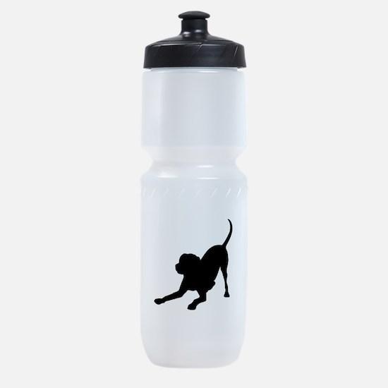Lab 1C Sports Bottle