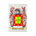Palomar Rectangle Magnet (100 pack)