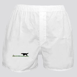 Gordon Setter in the Field II Boxer Shorts