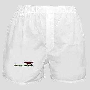 Irish Setter in the Field Boxer Shorts