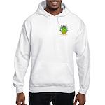 Paez Hooded Sweatshirt