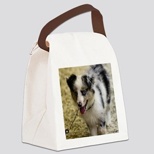 Blue Eyes Canvas Lunch Bag