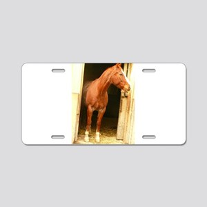 chestnut horse in stall Aluminum License Plate