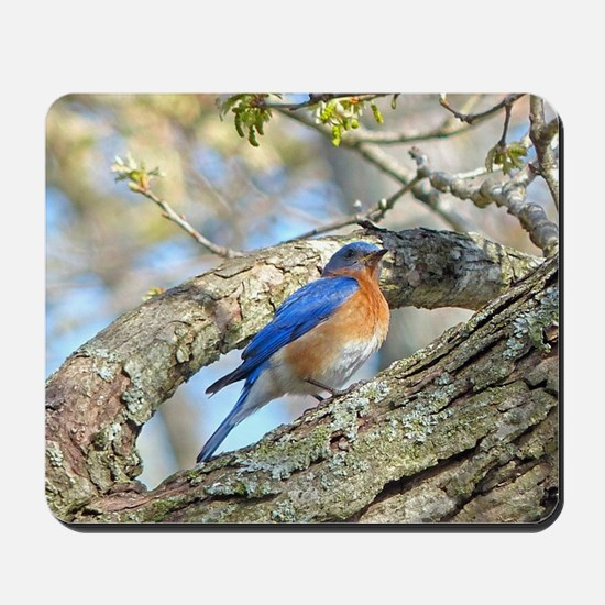 Bluebird Mousepad