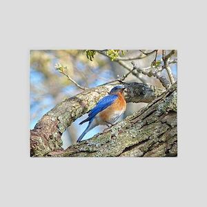 Bluebird 5'x7'Area Rug