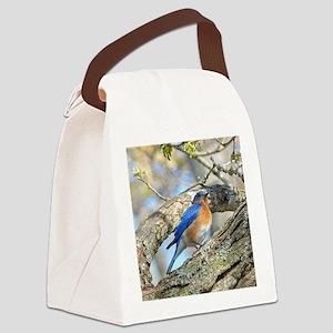 Bluebird Canvas Lunch Bag