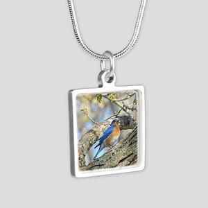 Bluebird Necklaces