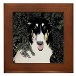 Borzoi Portrait Framed Tile