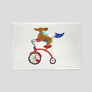 Dachshund On Bike Magnets