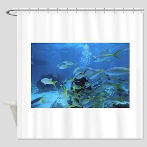 Underwater fish Shower Curtain