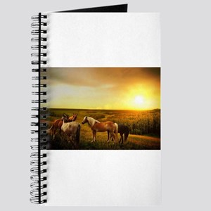 Ponies in a Pasture Journal