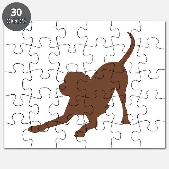 Lab 1C Brown Puzzle