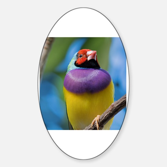 Unique Gouldian Sticker (Oval)
