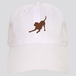 Lab 2 Brown Baseball Cap
