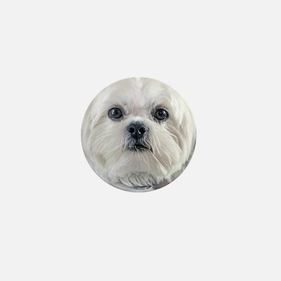 Cute Shih tzus Mini Button