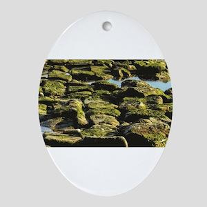 green rocks of glory Oval Ornament