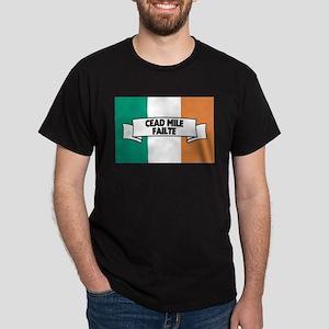 Irish Flag Welcome T-Shirt