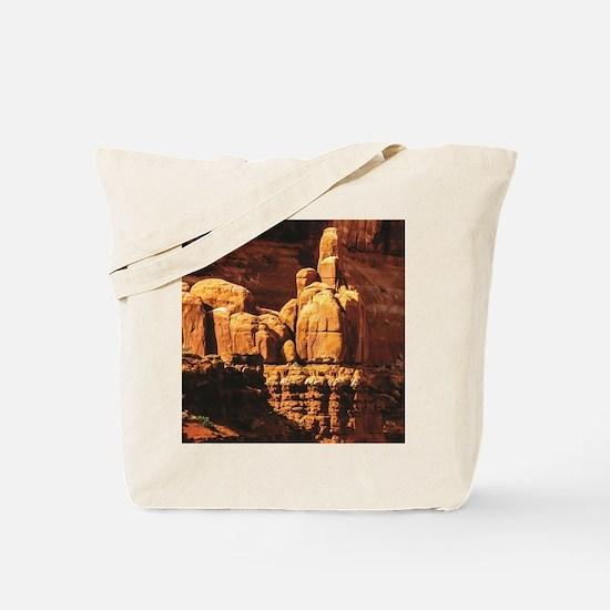 Cool Rock ware Tote Bag