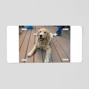 golden retriever puppy Aluminum License Plate