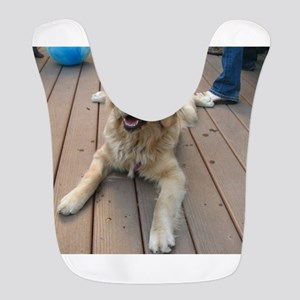 golden retriever puppy Bib