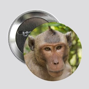 "Fierce Monkey 2.25"" Button"