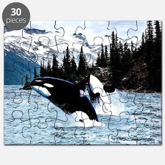 Unique Orca Puzzle