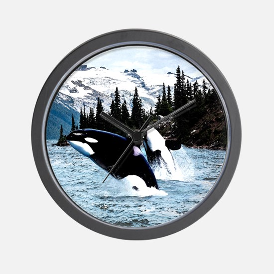 Funny Killer whale Wall Clock