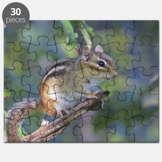 Funny Chipmunk Puzzle