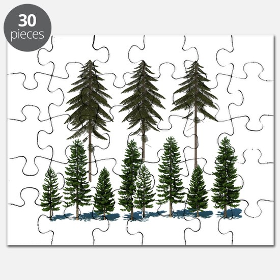 FOREST Puzzle