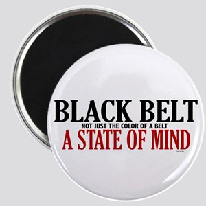 Not Just The Color Of A Belt Magnet
