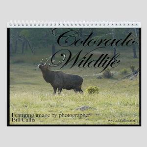 Charlie Alolkoy Photo Wall Calendar