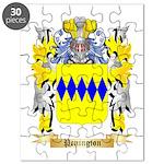 Penington Puzzle