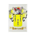 Pellegrin Rectangle Magnet (10 pack)