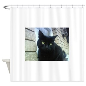 Bombay Cats Shower Curtains