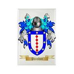 Punshon Rectangle Magnet (100 pack)