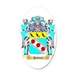Pullein Oval Car Magnet