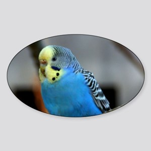 Budgie Flower Sticker