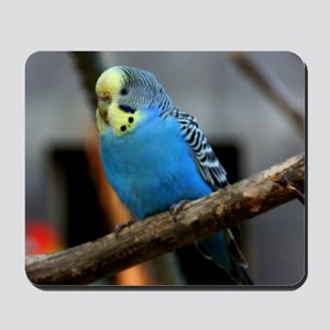 Budgie Flower Mousepad