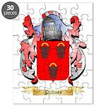 Pudney Puzzle