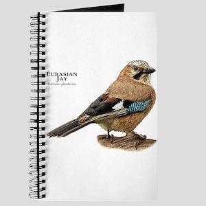 Eurasian Jay Journal