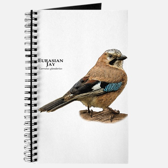 Eurasian Jay Journal