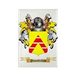 Proudfellow Rectangle Magnet (100 pack)