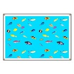 Pacific Reef Fish Scatter Banner