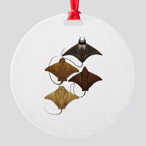 RAYS Ornament